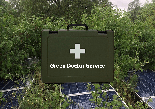 Image shows: a bio-solar roofs overgrown with saplings and buddleia with image of the P&P green roof doctor's bag over the top.