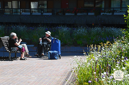 Image shows two seated people in discussion at Barbican gardens in London. Planting by Nigel Dunnet. Green infrastructure by Pritchard & Pritchard.