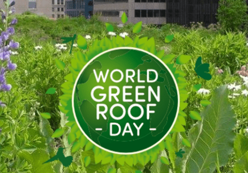 mage shows: World Green Roof Day banner. Celebrated on June 20 every year.