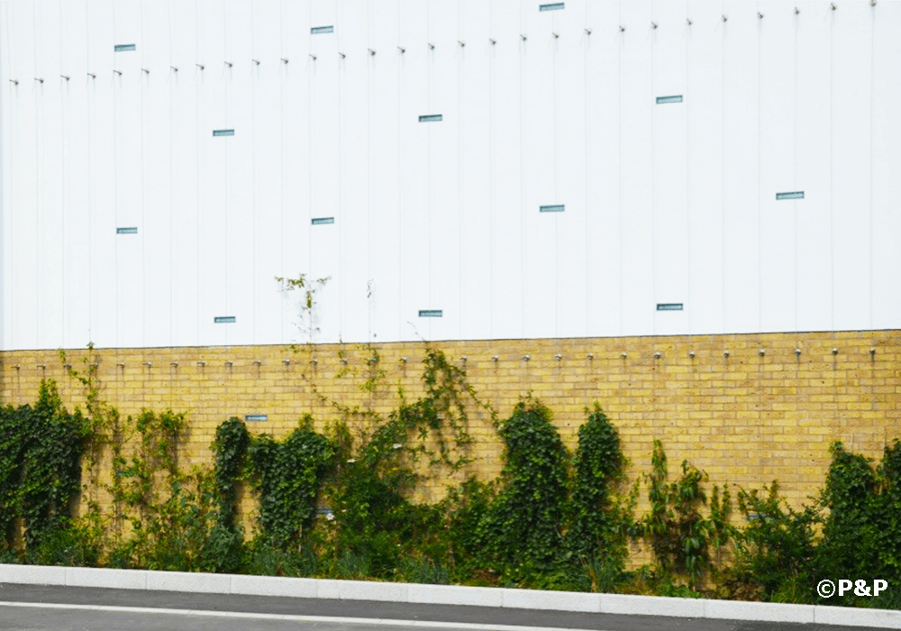 Image shows the green facade installed by Prichard & Prichard on a stainless-steel bar-and-wire-rope trellis in Colindale.