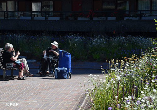 Image shows two members of the public in deep discussion seated in the Barbican Beech Gardens, London, one is on a bench the other in a wheelchair. P&P was the installer of the green infrastructure for the planting.