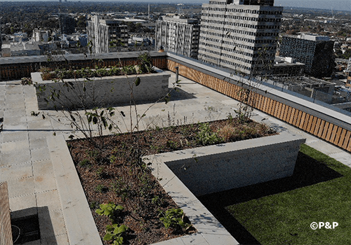 Image shows the planters and planting on one of the roof terraces at Carolyn House, Croydon. All installed by the P&P team.