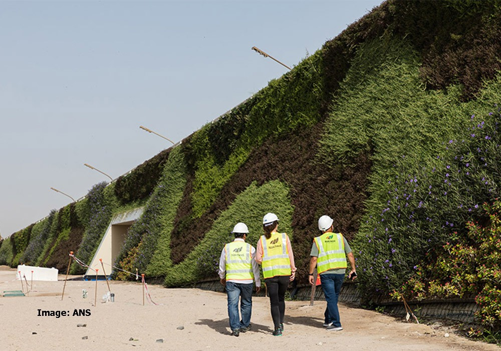 Image: The current world record for the largest living roof project is Khalifa Avenue, Qatar, including a total area of 7,000sqm. This uses an ANS Living Wall System, installed by Nakheel Landscapes.