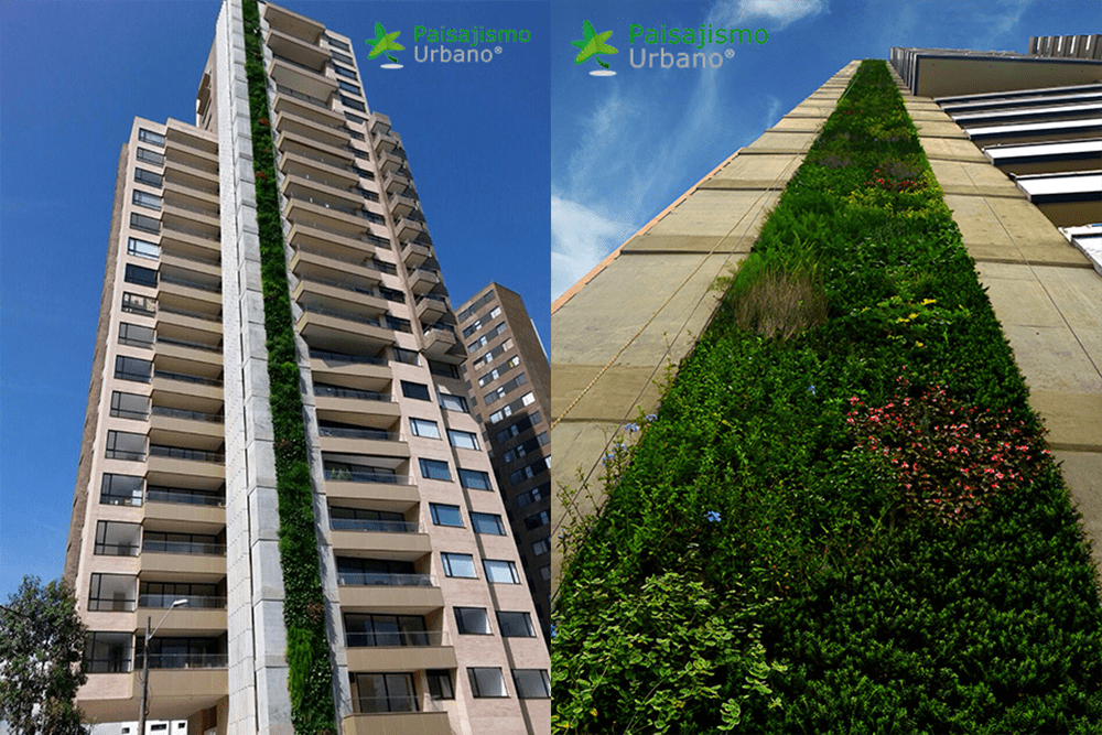 Image: The tallest living wall in the Americas, on a residential building in Medellín, Colombia