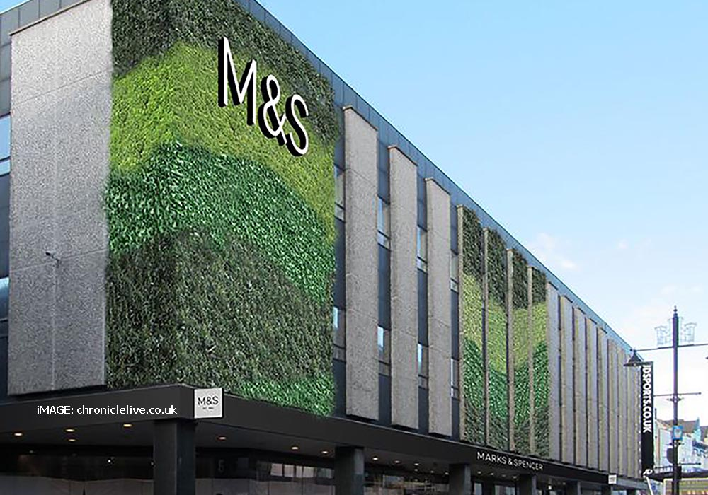 Living wall at Marks and Spencer Leeds.