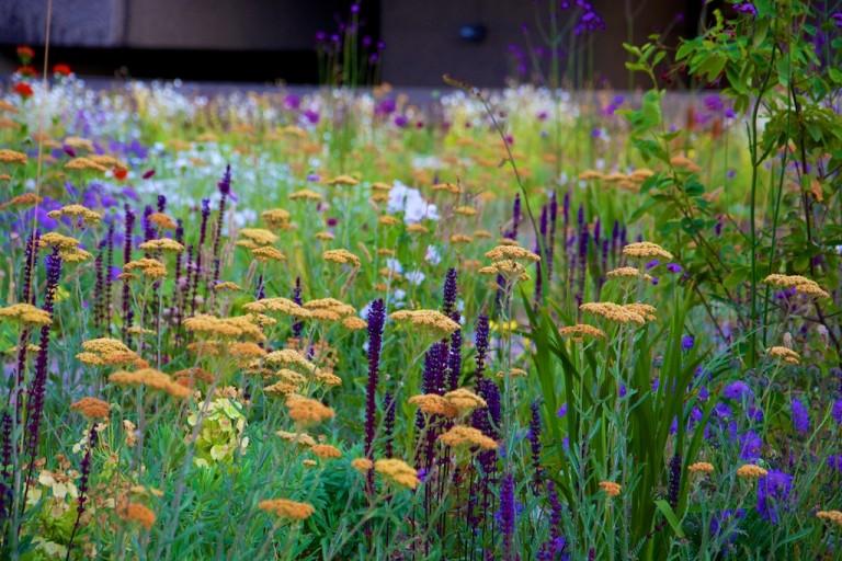 Barbican Centre Planting