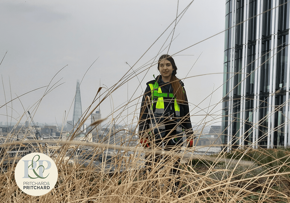 Vaso Syngouna – a female living roof installation and maintenance expert at Pritchard and Pritchard on pictured on top of a green roof in the City or London