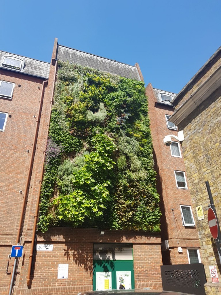 Orchard Lisle Living Wall maintained by Pritchard and Pritchard