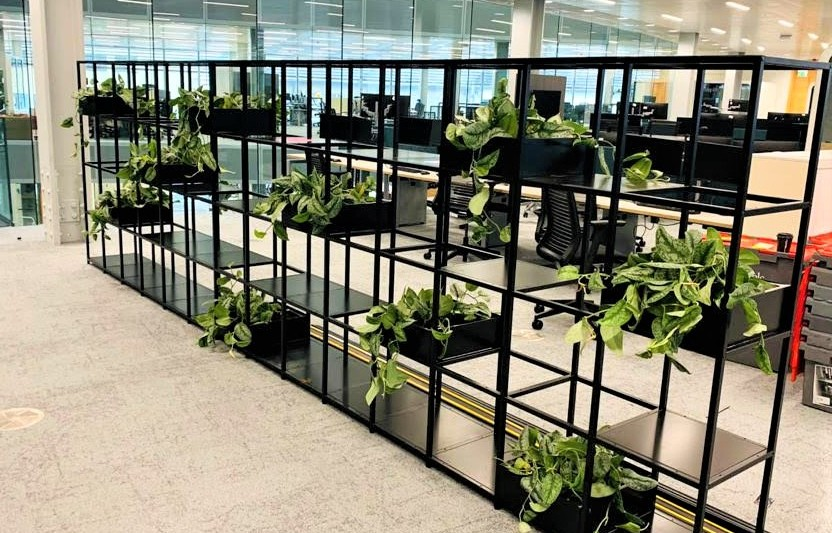 Interior Planting Shelf Scheme at CBRE