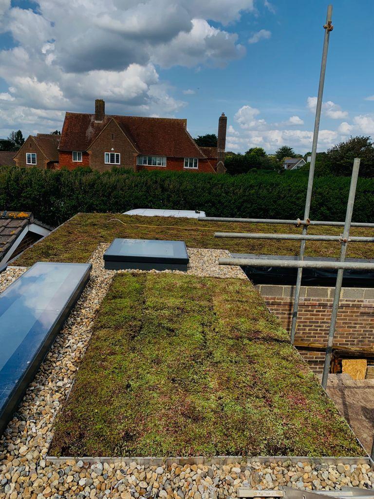 Sedum Green Roof Zinco System