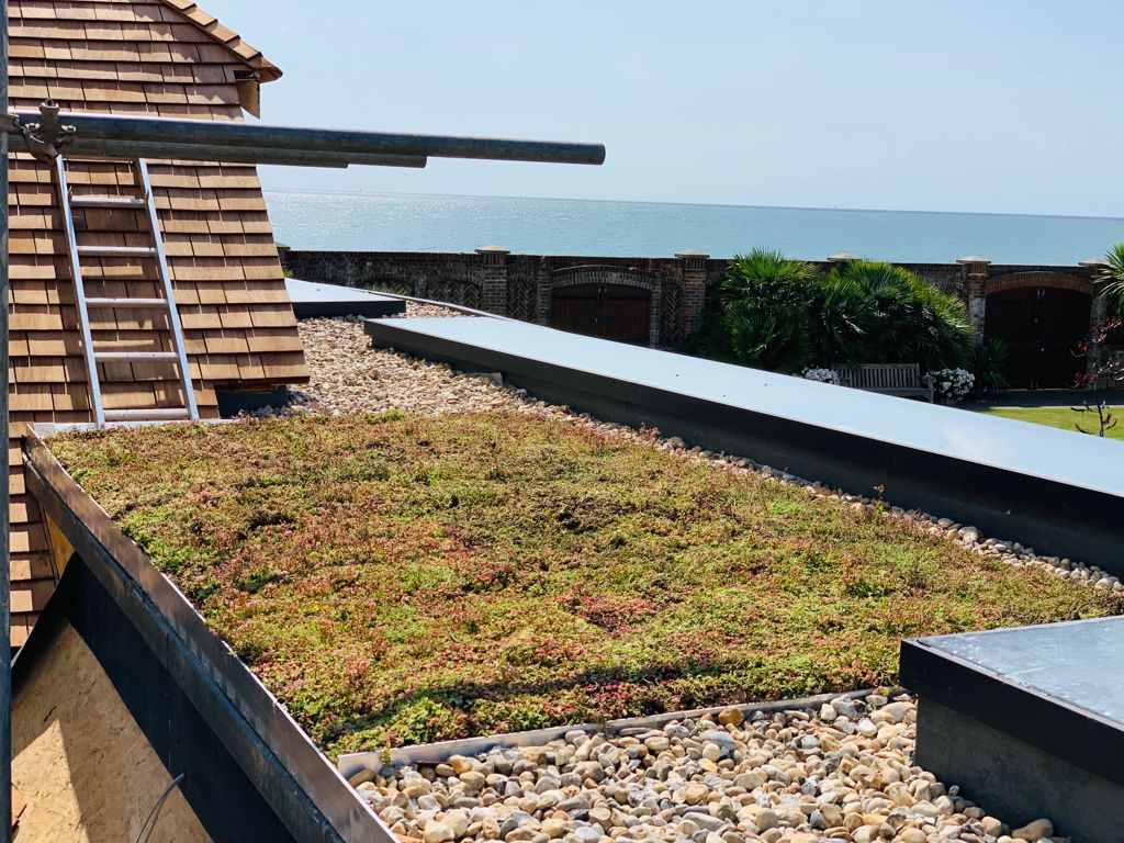 Green Roof Zinco System installed by Pritchard and Pritchard